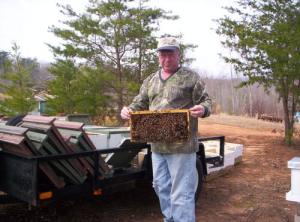 honey bees, queens, beekeeping, Blacksburg, Christiansburg, New River Valley Beekeepers Association, Russian bees