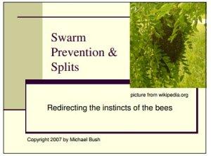 Mike Bush Presentation